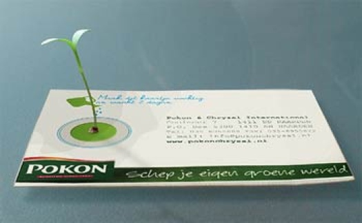 biz-card-sprout