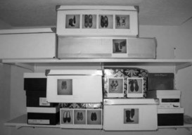 polaroid-shoe-box