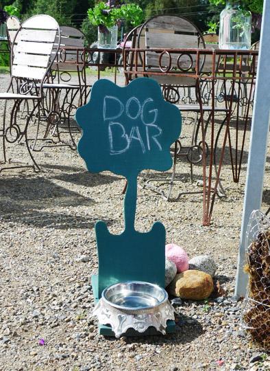 dog-bar-1-redo