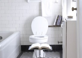 bathroom-library_