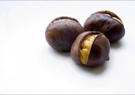 chesnuts-w-border1