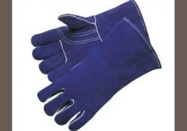 blue-glovesborder1