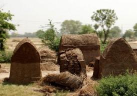 dung huts