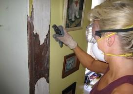 kitchen paint b:sanding