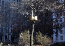 tree hut:NY 2