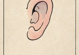 ear in japanese