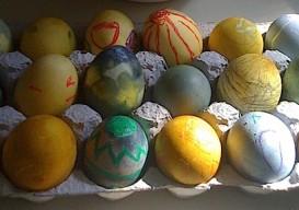 ambatalia finished eggs
