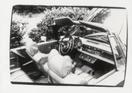 Warhol car photo