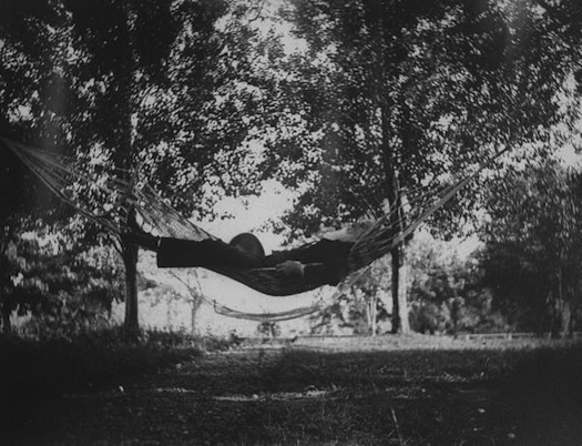 asleep in a hammock photo