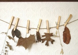 clothes pins with leaves