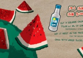 illustrated gin soaked watermelon recipe