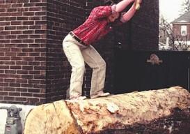 log chopper