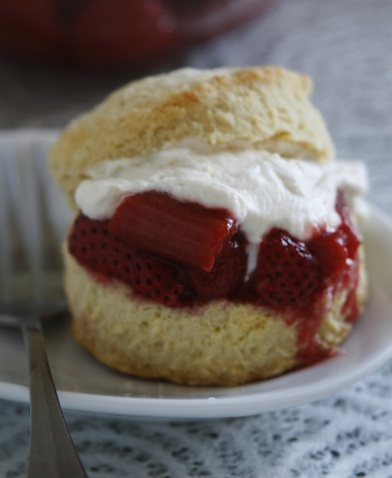 rhubarb shortcake with cream biscuits