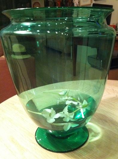 Maria Robledo's pond in a vase