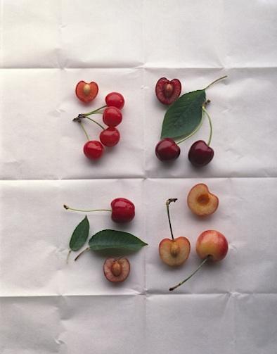 Maria Robledo cherries still life