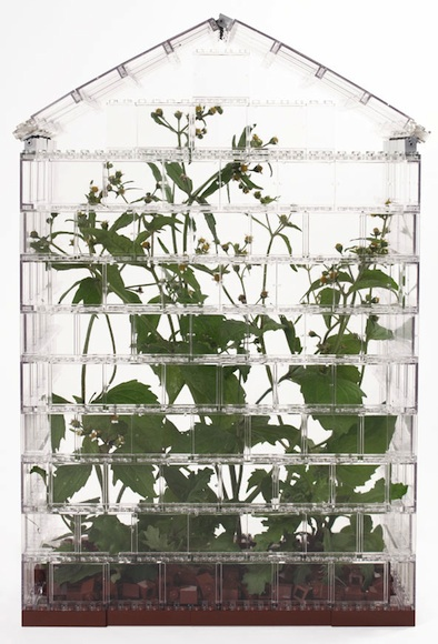 clear Lego greenhouse