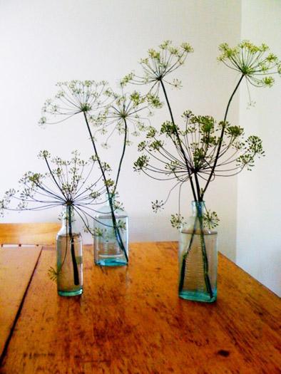 dill weed as flower arrangement