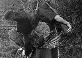 pioneer woman with wild turkey, helvetia West Virginia