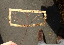 leaf art via Dargelos