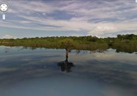 Google St View Rio Negro