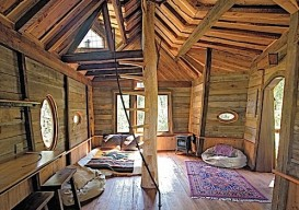 the inside of a treehouse in carbondale colorado