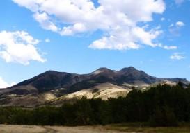 Laura Handler's Montana Cabin view