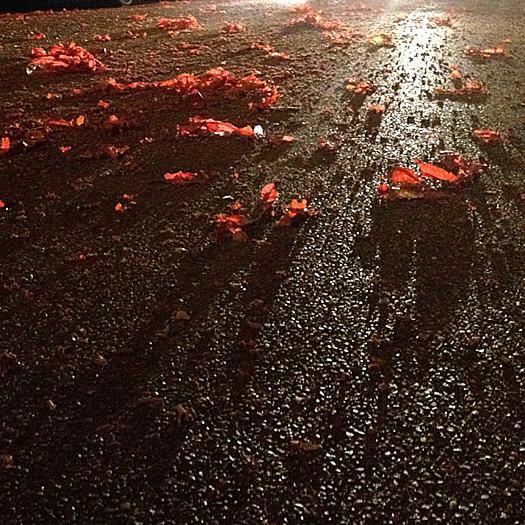 Instagram, street, headlights, fireworks, detritus
