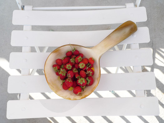 strawberries in horn spoon