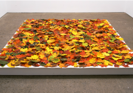 Installation view of Fallen in its first exhibition at Galerie Lelong in New York