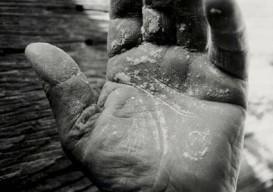 Tessa Traeger's photos of hands in the Vivarais region of France