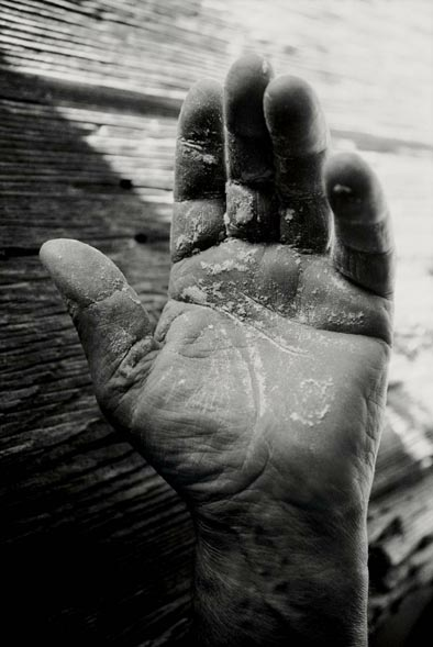 Tessa Traeger's photos of hands in the Vivarais region of France