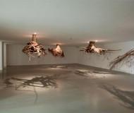 'humus 2012' by giuseppe licari