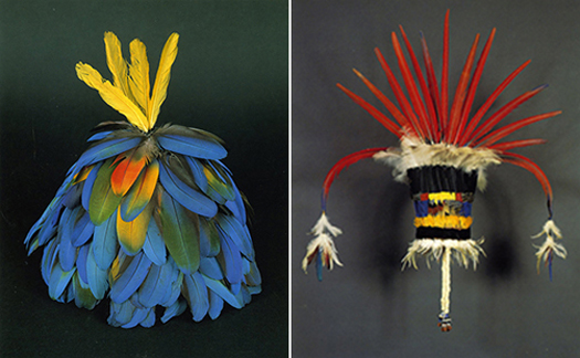 feathered head dresses