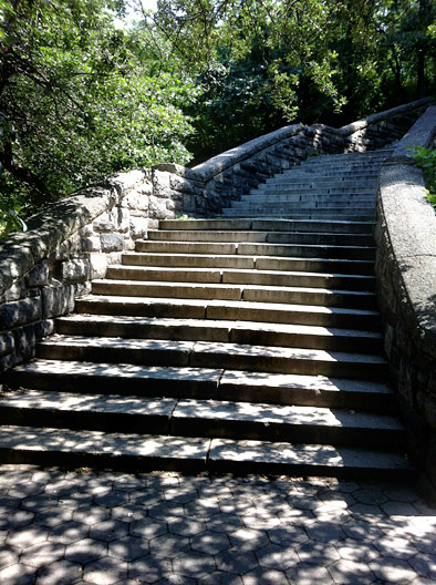 steps as stairmaster