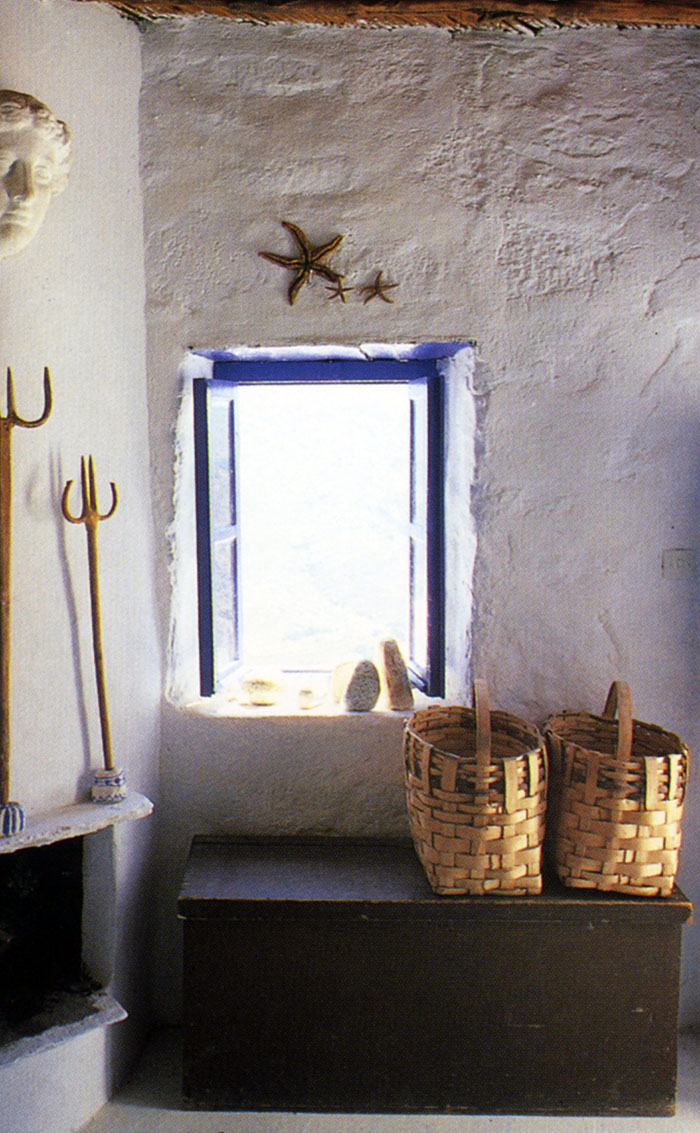 starfish and shells with a greek window