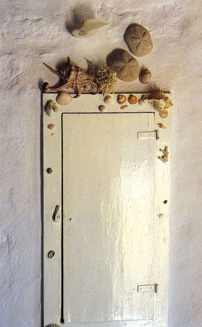 shells festooning a cupboard