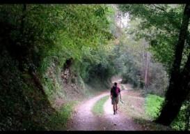 3 improvs: pilgrimage, kickstarter win, poetry practice