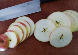 top sliced apple process