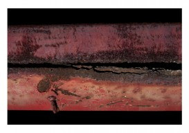 Fern Berman 'Decomposition 1'