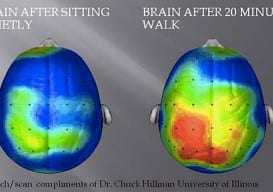 brain before and after walking