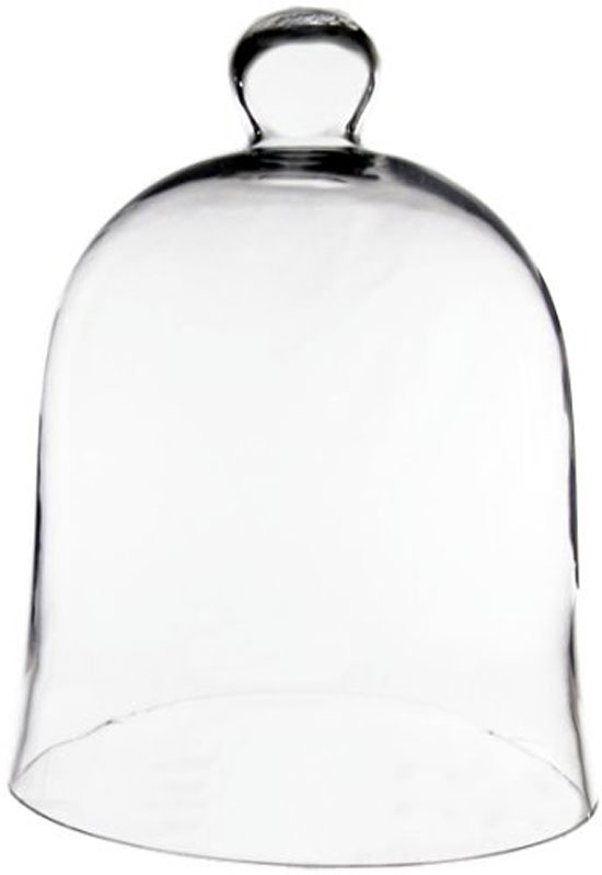 bottle garden cloche bell jar
