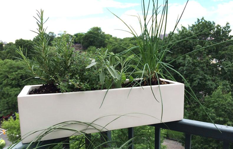 Planter Sally Patio3