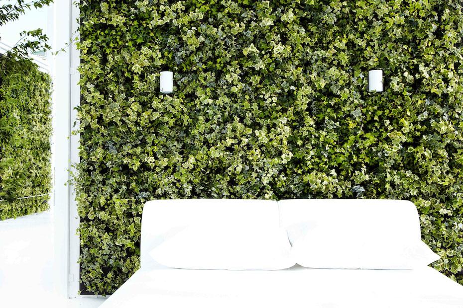 Makoto Living Walls Floors Featured