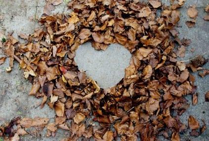 assembledhearts.blogspot.com