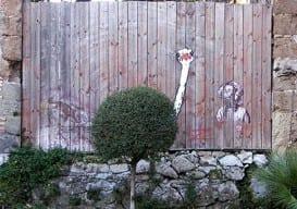 Foliage Graffiti 2