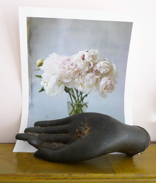 Buddha's hand/Sally Schneider