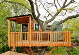 Garden Tree House in Chicago