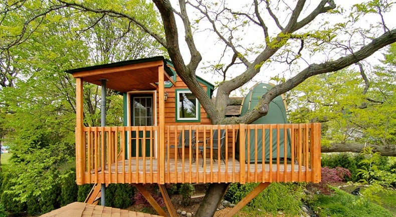 Garden Tree House in Chicago