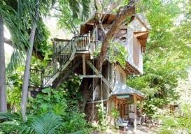 Miami Treehouse on an Organic Farm