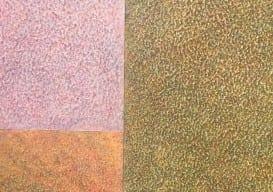LeWitt wall painting 450 dtl Carnegie Museum 2